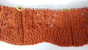 Beginner Lace Cardigan Body Pattern Begins