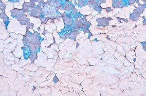 2016 Colors: Shutterstock
