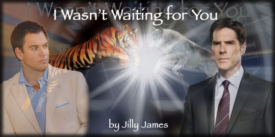 I Wasn't Waiting for You by Jilly James
