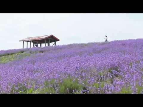『北海道砂川市』の動画を楽しもう!