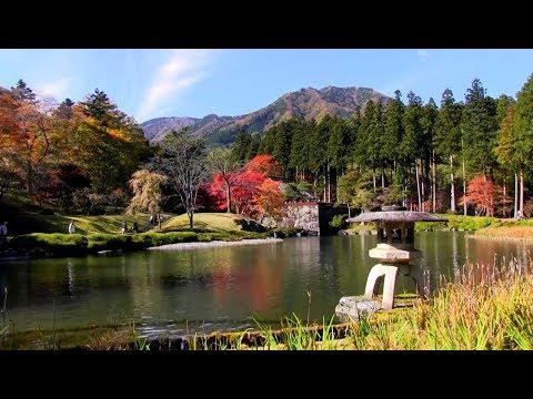 『北海道雨竜郡北竜町』の動画を楽しもう!