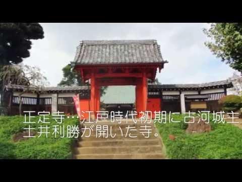 『茨城県古河市』の動画を楽しもう!