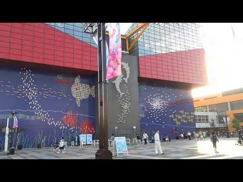 『北海道札幌市白石区』の動画を楽しもう!