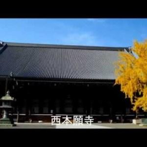 『東京都千代田区』の動画を楽しもう!