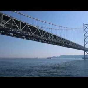 『静岡県浜松市中区』の動画を楽しもう!