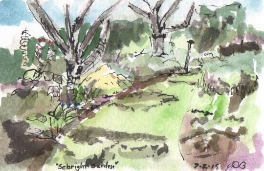 Sebright Gardens Sketch