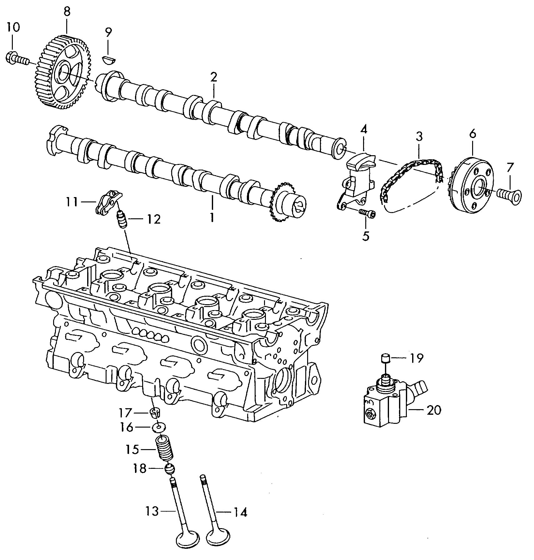 Volkswagen Timing Chain