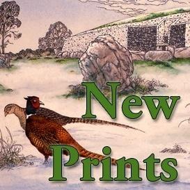 New Prints
