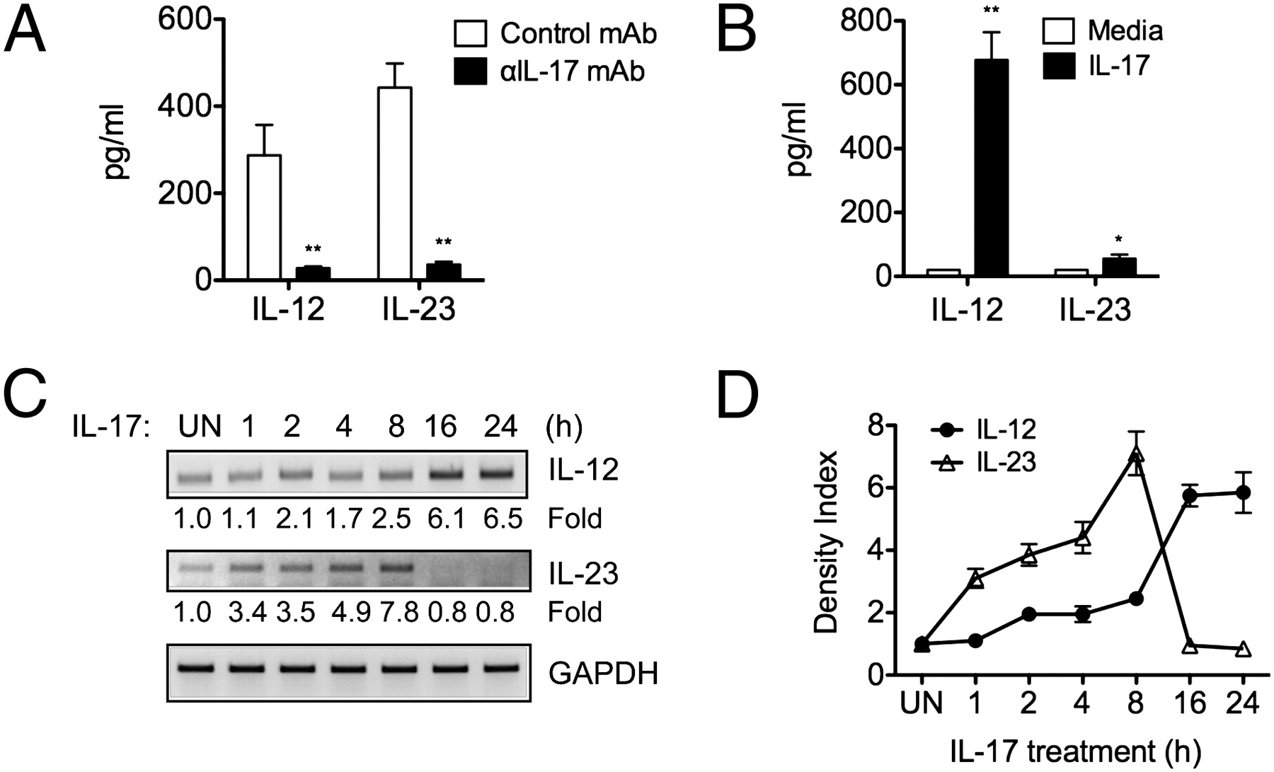 Th17 Cells Induce Colitis And Promote Th1 Cell Responses