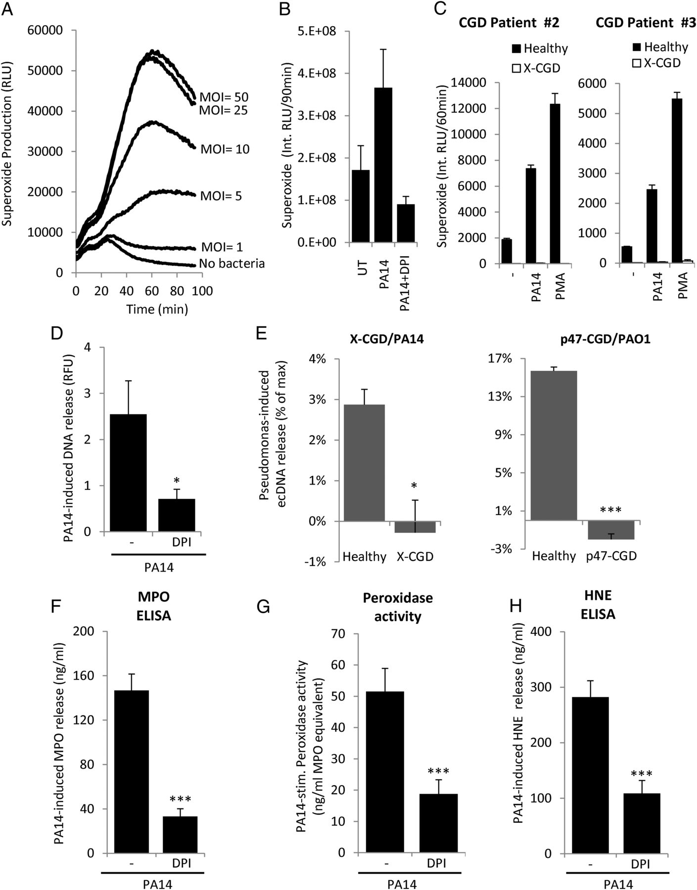 Release Of Cystic Fibrosis Airway Inflammatory Markers From Pseudomonas Aeruginosa Stimulated