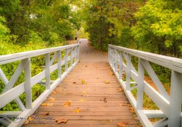 nature photography Nature Photogrpahy – Autumn in Bella Vista Arkansas Autumn at Tanyard Creek 41