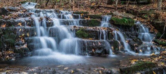 nature photography Nature Photography – Dogwood Canyon Dogwood Canyon 17