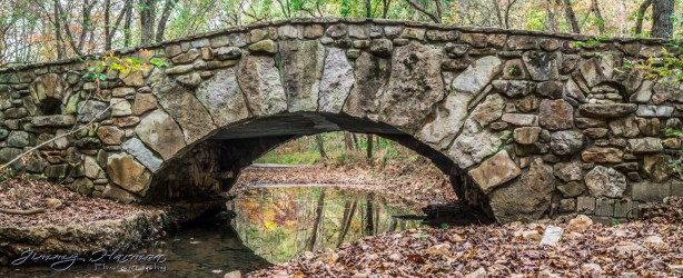 nature photography Nature Photography – Dogwood Canyon Dogwood Canyon 22