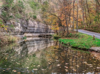 nature photography Nature Photography – Dogwood Canyon Dogwood Canyon 23