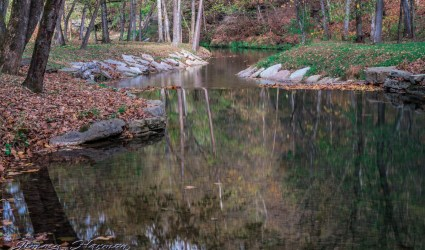 nature photography Nature Photography – Dogwood Canyon Dogwood Canyon 27
