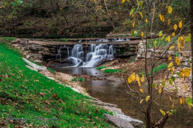 nature photography Nature Photography – Dogwood Canyon Dogwood Canyon 30