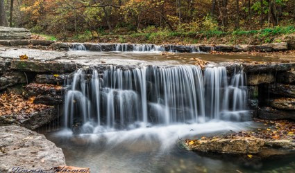 nature photography Nature Photography – Dogwood Canyon Dogwood Canyon 4