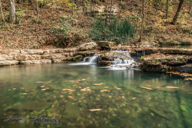 nature photography Nature Photography – Dogwood Canyon Dogwood Canyon 7
