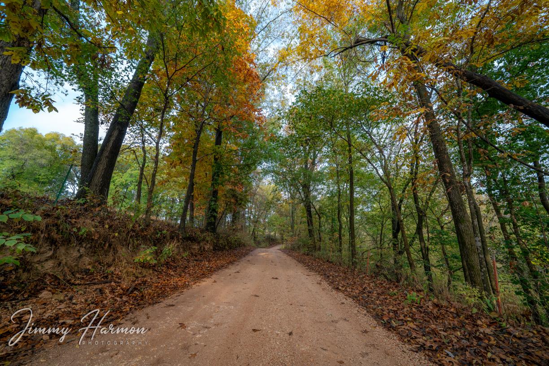 Autumn Dirt Road