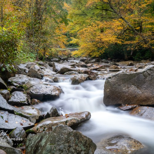 Smoky Mountain Autumn River