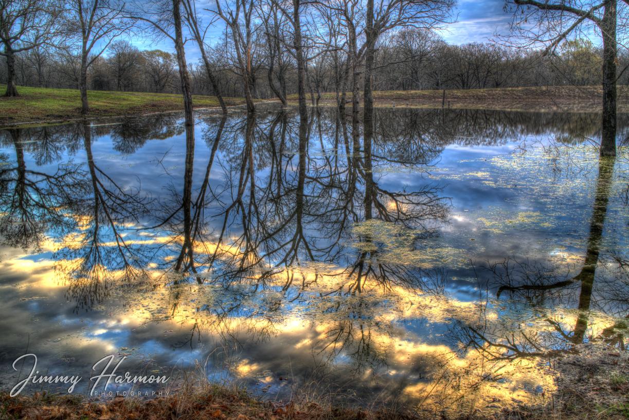 Morning Reflections 2