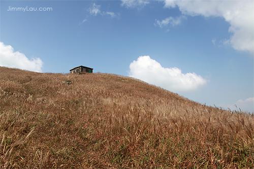 大東山爛頭營 - 香港第三高峰 - 香港好去處 | 香港攝影景點 | ImageJoy