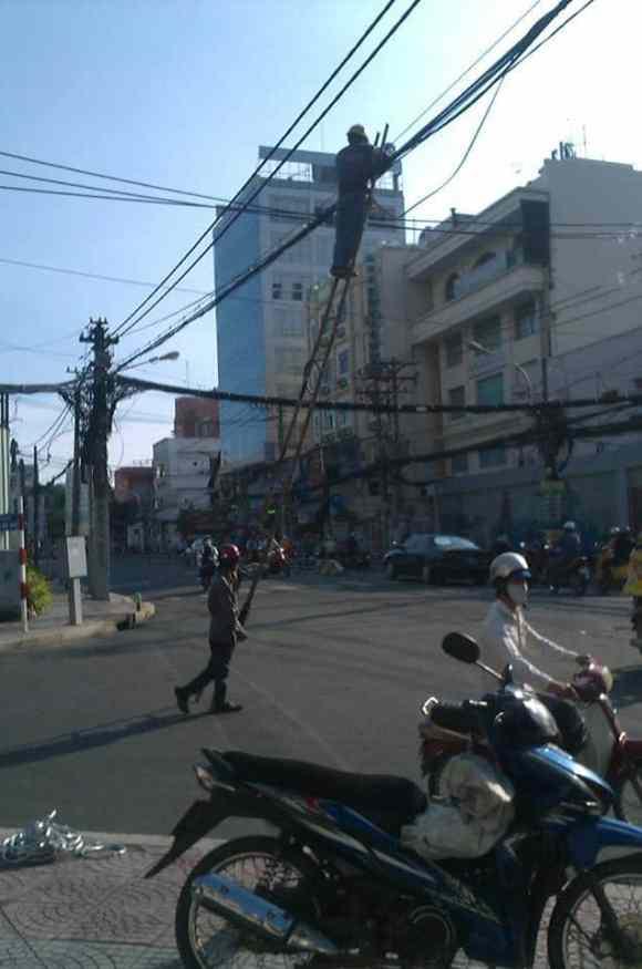 singapore-ladder-wire