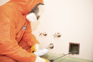 Mould Remediation