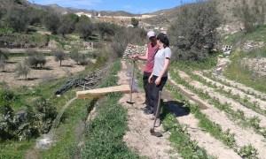 Zalévání zahrady ve španělské Andalusii.