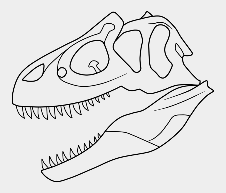 T Rex Skeleton Coloring Pages Allosaurus Black And White Drawing Cliparts Cartoons Jing Fm