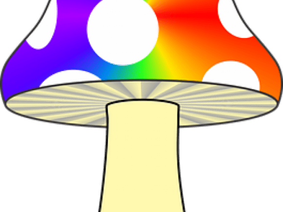 Trippy Clipart Colorful Mushroom Jamur Animasi Transparent Cartoon Jing Fm
