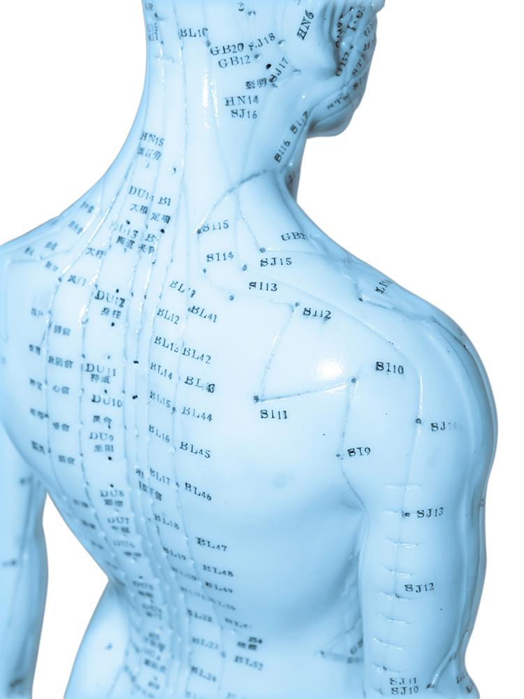 列治文中醫針灸-活水中醫針灸 Living Water Acupuncture - jinlisting.com