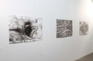 Palimpsest–Fleck–Punkt, Ausstellungsansicht, Guardini Galerie