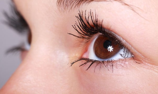 10 Foods best for eyes