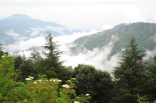 Chail - Himachal Pradesh