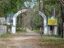5 Best national parks in Assam