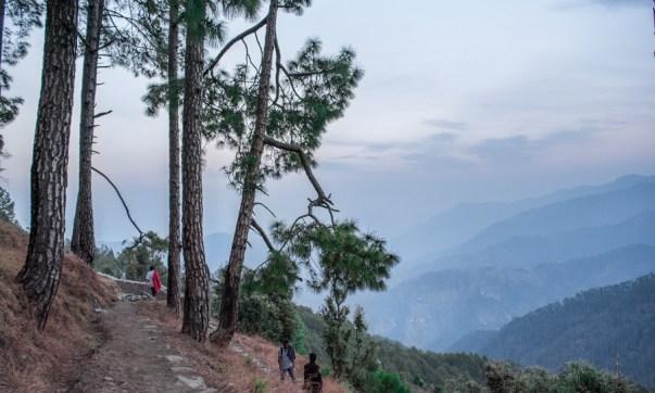 Trek_route_in_binsar_wildlife_sanctury
