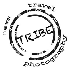 tribeagency