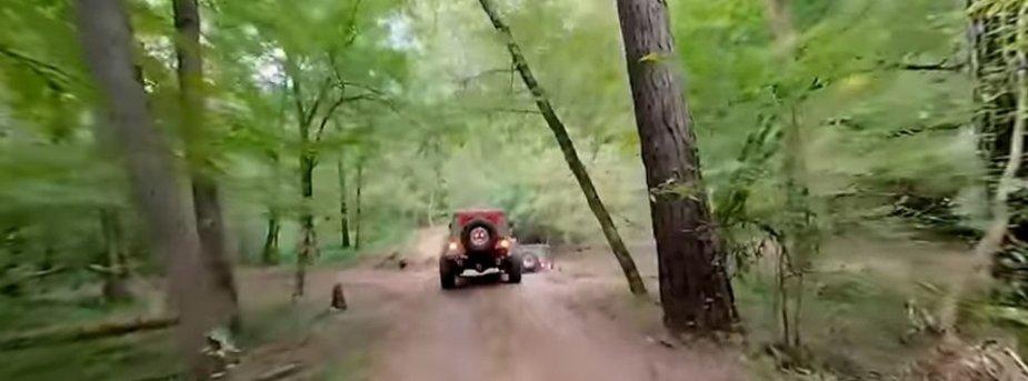 Wrangler Off-Roading 360 View Woods