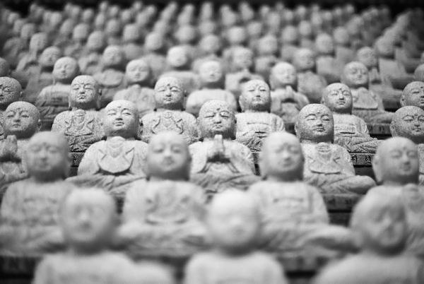Buddhas-wide