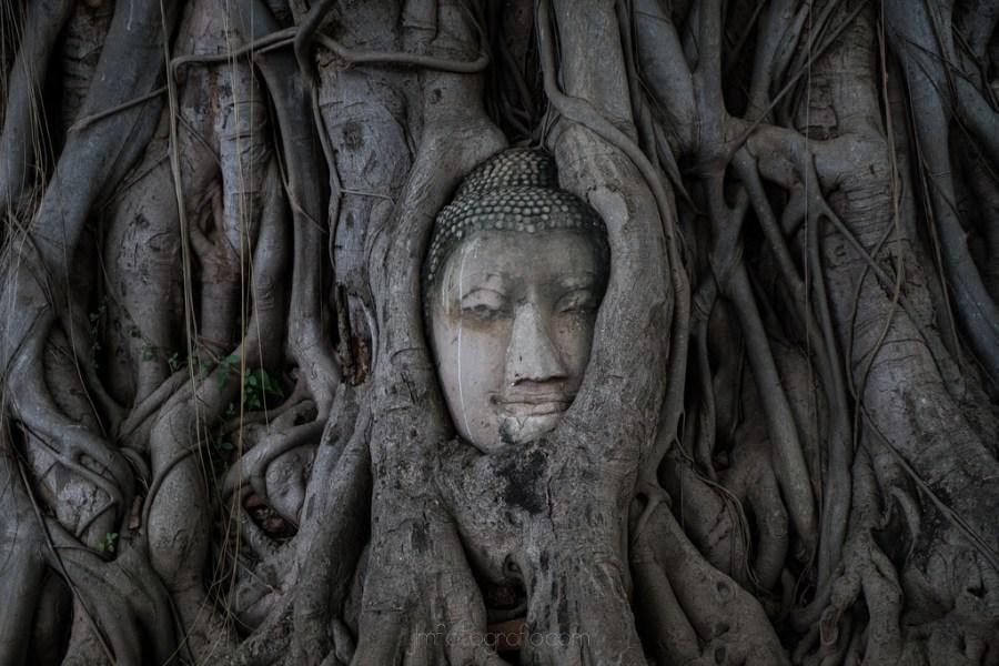 Ayutthaya4