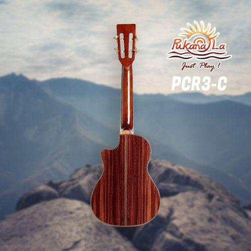 PCR3-C