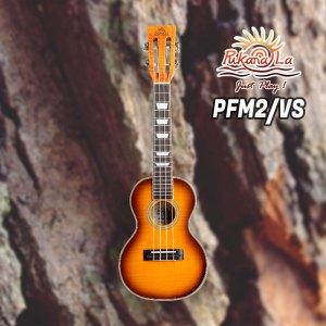 PFM2/VS