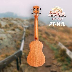PT-M1L