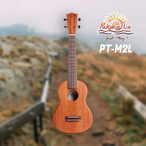 PT-M2L