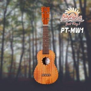 PT-MW1
