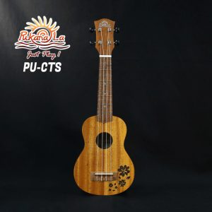 PU-CTS