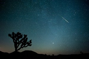 joshuatreemeteor_website