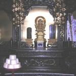 BUDA VIVIENTE6