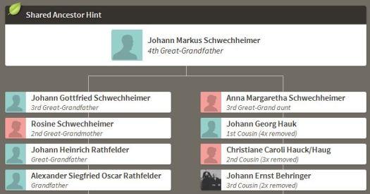 Schwechheimer False Match